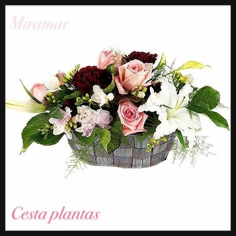 Cesta flor variada Ce. 11